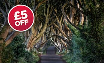 Game of Thrones Tour - The Dark Hedges